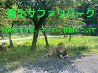 富士サファリパーク内をマイカー移動することについて解説